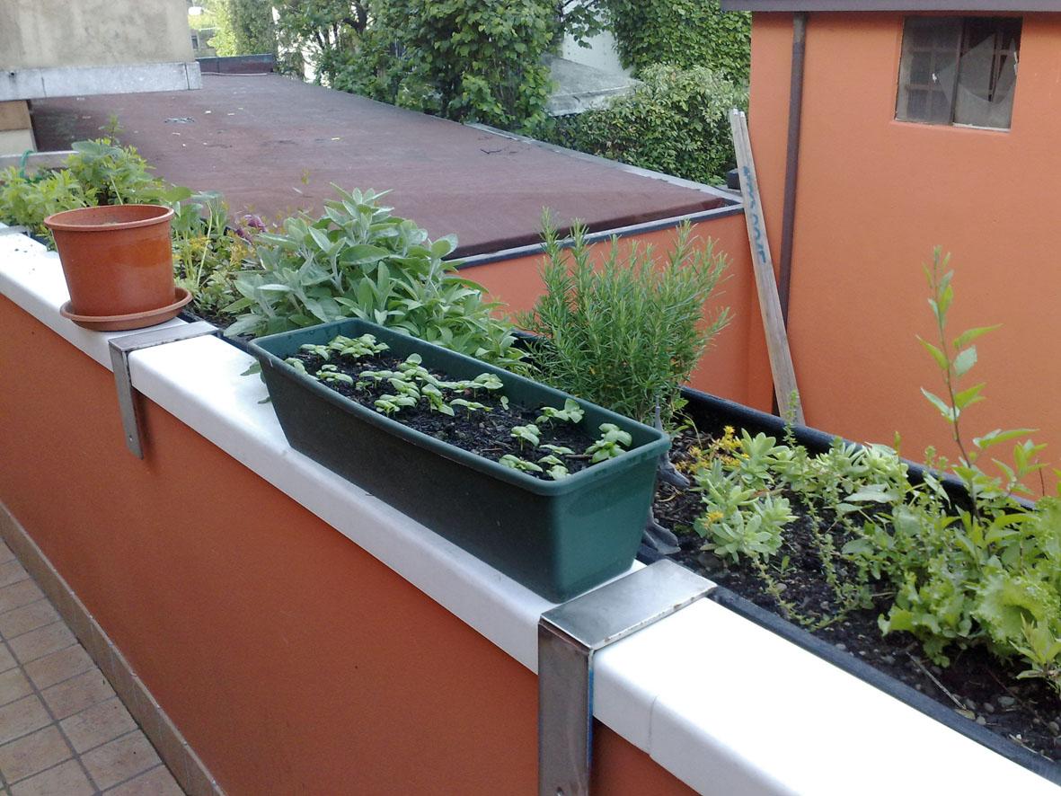 Ortensie Sul Balcone : L orto sul balcone eco di san gabriele