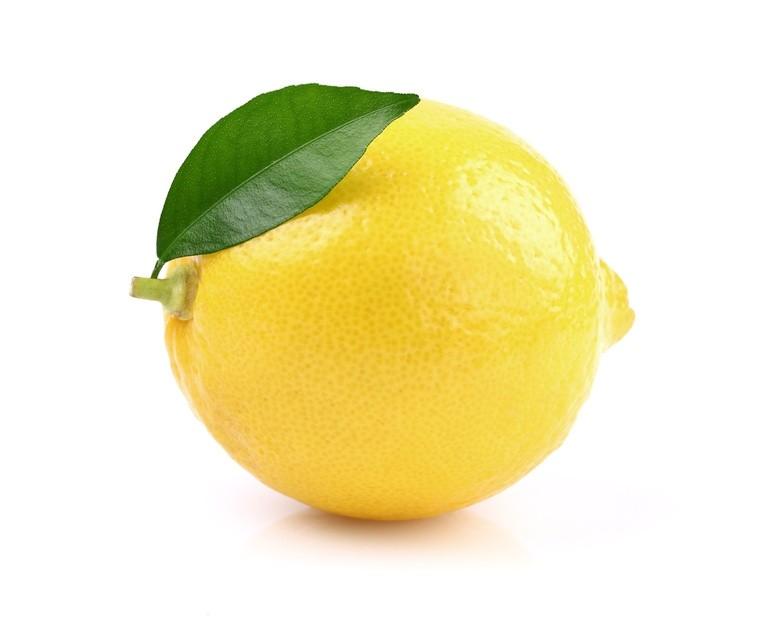 Limoni Disegno: L'ECO Di San Gabriele